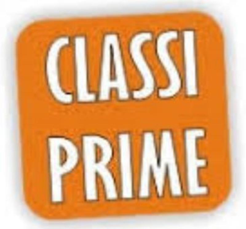Pubblicazione  Classi prime A.S. 2019/2020